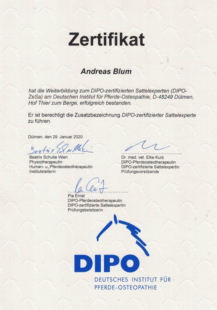 Zertifikat Sattelexperte Andreas Blum DIPO-ZeSa